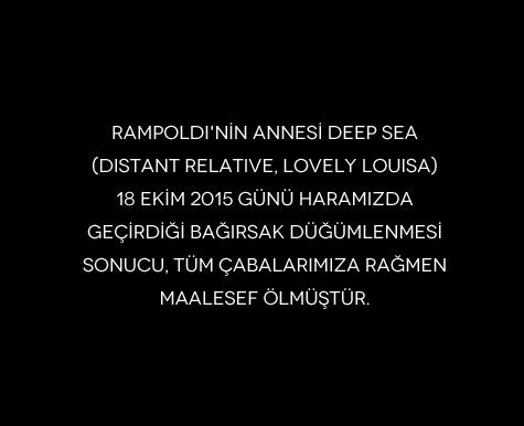 Rampoldi'nin annesi Deep Sea (Distant Relative, Lovely Louisa) Hakkında